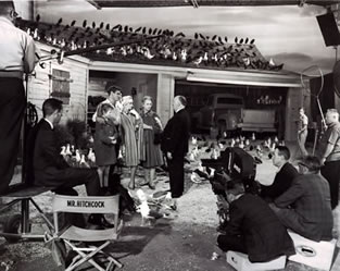 On The Set of The Birds